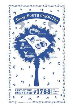 South Carolina State Kitchen Towel