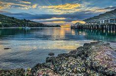 the dock at Waiheke Island // near Auckland, North Island, NZ