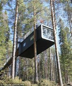 world's most amazing tree houses - Yahoo Image Search Results