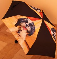 LittleGifts Shih Tzu Umbrella Little Gifts http://www.amazon.com/dp/B005QO1GYY/ref=cm_sw_r_pi_dp_ijKxvb0V62GNA