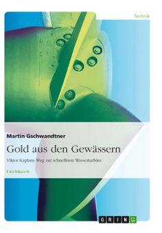 Gold aus den Gewässern. GRIN http://grin.to/oQqtl Amazon http://grin.to/519rp