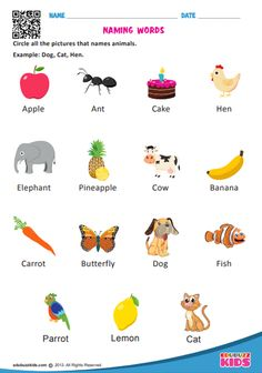 Printable naming words worksheets with noun of Animals.These allow your kids or students to Circle all the pictures that names animals. English Activities For Kids, English Grammar For Kids, English Worksheets For Kindergarten, Printable Preschool Worksheets, English Lessons For Kids, 1st Grade Worksheets, Phonics Worksheets, Weather Worksheets, Nouns Worksheet