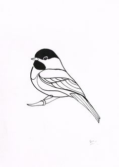 bentheillustrator:    Black Capped Chickadee - Dip pen and ink drawing  Now available to buy from FluidAnimals.com!