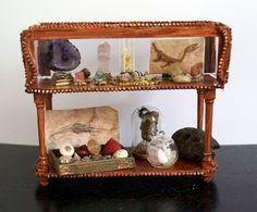 Minerals, shells and fossils on display from Petit cabinet de curiosités
