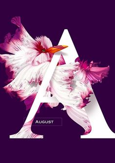 August ~ Flying Flowers 2016 on Behance Graphic Design Posters, Graphic Design Typography, Lettering Design, Branding Design, Layout Design, Graphisches Design, Nail Design, Photoshop, Lightroom