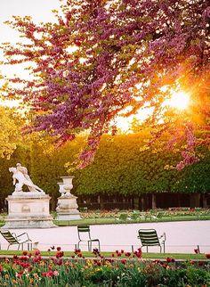 Credit photo : @jeffonline #Fall #Paris #France #Sunset