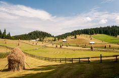 Landscape from the village of Gârda de Sus in the Apuseni Mountains, Romania My website Study Help, Marcel, Romania, Vineyard, Bible, Mountains, Landscape, Green, Outdoor