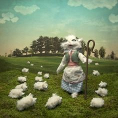 LA PASTORA ... laura plankster photography animals chicquero sheep