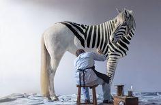 Мужчина рисует на белой лошади полосы