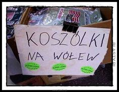 Polish Memes, Polish Language, Wtf Funny, Plant Decor, Best Memes, Haha, American, Funny Pictures, Jokes