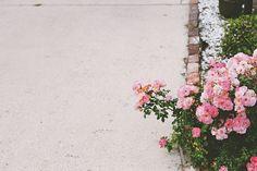 by olivia / everyday musings, via Flickr