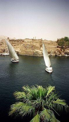sıtkı All Nature — Egypt