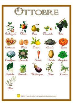 Mangiare frutta e verdura di stagione è uno dei miei mantra! Non chiedetemi ricette con le zucchine a dicembre o cavolfiore il giorno di ferragosto… credo fortemente che ad ogni stagione corrisponda un sapore e un profumo che i prodotti fuori stagione non avranno mai. Ma come fare per sapere come nutrirsi con i prodotti …