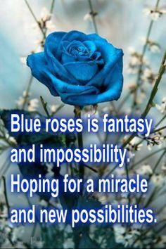 A Blue Rose Means