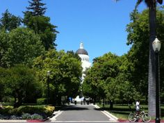 One of my favorite places in Sacramento: The Capitol Building and Capitol Park. Take a tour of trees from around the world or tour the grand architecture. Click through for more information.