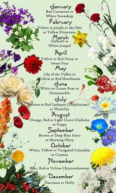 Are you going to plant the flower of your birth month this spring?