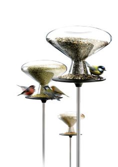 Bird Table: A beautiful little bird feeder