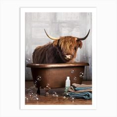 Highland Cow In A Bathtub Art Print by DomoINK - Fy Canvas Frame, Canvas Wall Art, Wall Art Prints, Fine Art Prints, Poster Prints, Canvas Prints, Posters, Highland Cow Painting, 5 D