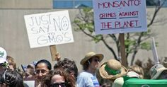 A special guest post from Institute for Responsible Technology founder Jeffrey Smith Editors note: The vast majority of corn, soybeans, canola, cotton, and sugar beets grown in the U.S. are genetically modified (GMOs). Monsanto and its allies claim that GMO crops reduce pesticide use, increase yield…