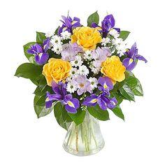 Blue Irises 1
