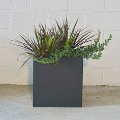 Modern Living, Mid-century Modern, Square Planters, Stuff To Do, Planter Pots, It Is Finished, Indoor, Canning, Furniture