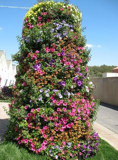 Creative Containers Columnar planter with Petunias and calibrachoa
