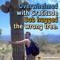 Gratitude Quotes - The Attitude Of Gratitude