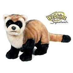 Amazon.com: Webkinz Signature Black Footed Ferret: Toys & Games