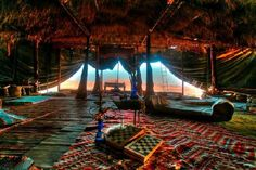 camping in a Bedouin tent in the Negev Desert is the best kind of camping.