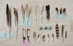 Feather> again, if you must use feathers, these are some that flow with what im envisioning.