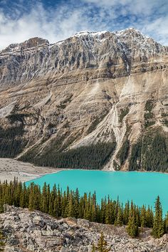 The turquoise water of Peyto Lake on the scenic Icefield Parkway in the rocky mountains of Banff National Park, Alberta, Canada