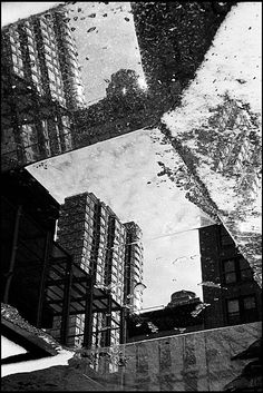 awesome distorted reflection