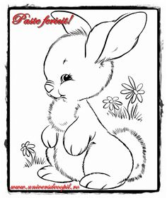 Bunny Coloring Pages For Kids from Animal Coloring Pages category. Printable coloring sheets for kids that you can print out and color. Check out our collection and print the coloring sheets free of charge. Easter Bunny Colouring, Bunny Coloring Pages, Coloring Pages To Print, Printable Coloring Pages, Coloring For Kids, Coloring Pages For Kids, Coloring Books, Coloring Sheets, Egg Coloring