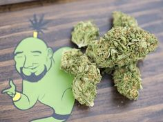 15 Best Green Genie Brand images in 2019 | Cannabis, Weed