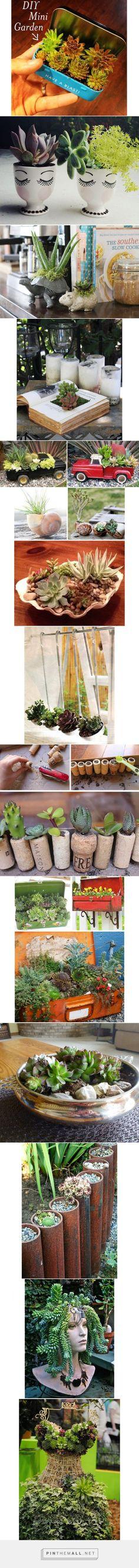 13 ideias de lugares inusitados para cultivar suculentas   Casa - created via https://pinthemall.net