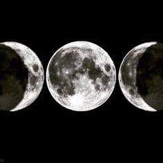 Rare Black New Moon Rising Tonight 🌙🌑🌙💫 #MotherLovesyYou #MotherMoon