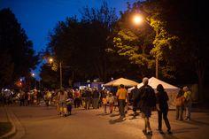 Busker Festival 2014