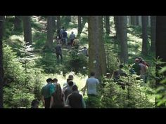 Terénna exkurzia a prezentácia prírode blízkej starostlivosti o lesy zástupcom médií - YouTube Youtube, Plants, Plant, Youtubers, Youtube Movies, Planets