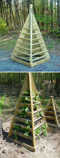 Exclusive Foods: How to build pyramid strawberry - Jardin Vertical Fachada Strawberry Tower, Strawberry Planters, Strawberry Garden, Diy Garden Fence, Raised Garden Beds, Palette Planter, Tower Garden, Garden Centre, Natural Playground