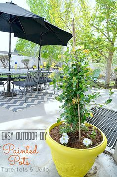 Easy Outdoor DIY Painted Pots! Perfect easy project to liven up your outdoor space -- Tatertots and Jello