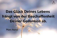 ...Das Glück Deines Lebens hängt von der Beschaffenheit Deiner Gedanken ab!!!