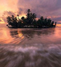 (1) Tweets con contenido multimedia de The Best Sunsets (@TheBestSunsets) | Twitter