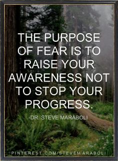 the purpose of fear...