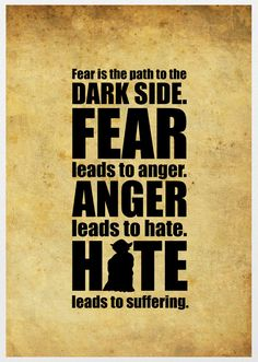 Fear is the path to the Dark Side. Fear leads to anger. Anger leads to hate. Hate leads to suffering. - I hadn't really realized how true this was until recently. Another important thing to learn from Star Wars.