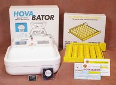 You are viewing our Basic Egg Incubator Combo Kit. Quail Racks for HovaBator Egg Turners (Set of -Temperature & Humidity Probe fits through incubator vent hole (HovaBator & Little Giant Chicken Incubator, Egg Incubator, Hatching Chickens, Baby Chickens, Digital Thermometer, Chicken Eggs, Small Birds, Poultry, Pet Supplies