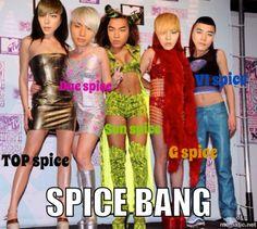 BIGBANG as the spice girls!? omg spice bang!! :D *kpop *bigbang *macro *funny *gd *top *taeyang *daesung *seungri
