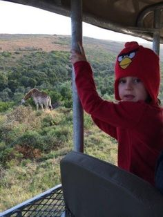 Game Drive at Botlierskop Game Reserve near Mossel Bay on the Garden Route. Great for families...