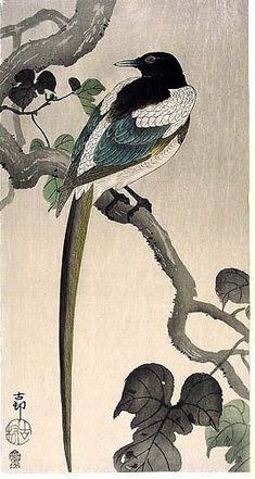 Ohara Koson 小原 古邨 (1877-1945) Magpie, Woodblock print Culture: Japan