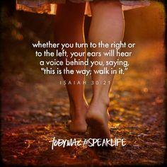 Walk in it