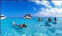 Snorkeling Holidays in Pattaya